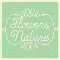 Flowers/Nature