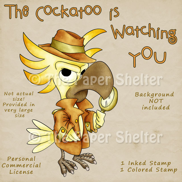 The Cockatoo is watching you